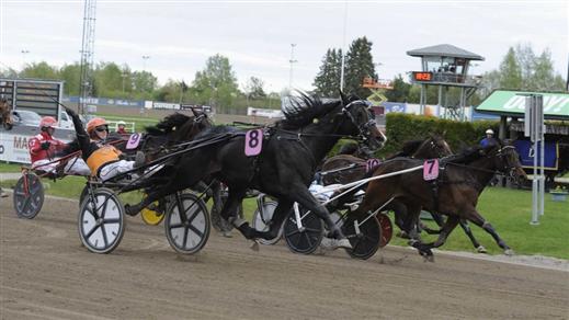 Bild för V5 Gävletravet 31 maj, 2018-05-31, Gävletravet