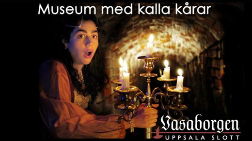 Bild för Entré till Vasaborgens museum kl 12-14, 2020-07-29, Vasaborgen Uppsala slott
