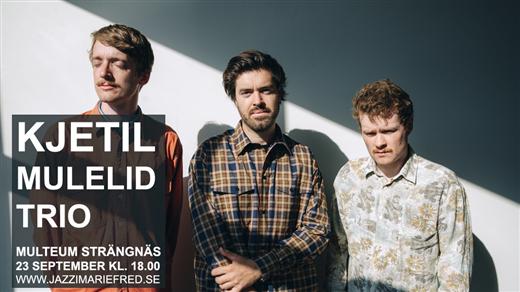 Bild för Kjetil Mulelid Trio, 2021-09-23, Kulturhuset Multeum