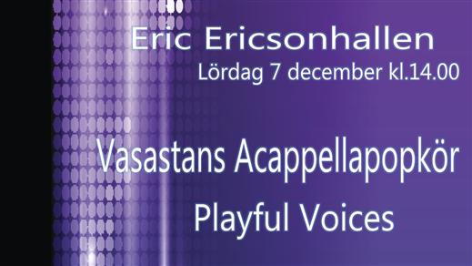 Bild för Pop Choir Concert- Vasa Acapop, Playful Voices, 2019-12-07, Eric Ericsonhallen-Skeppsholmskyrkan