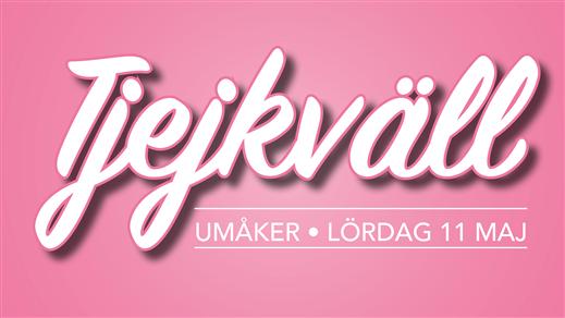 Bild för Tjejkväll på Umåker, 2019-05-11, Umåkers Travbana