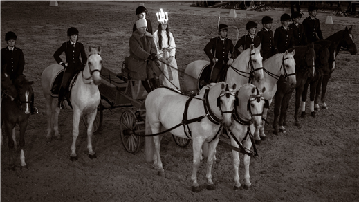 Bild för Luciakonsert med hästar, 2016-12-08, Kavallerikasern, Lidingövägen 28 Stockholm