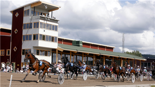 Bild för Arena Dannero 20 juli Kvällstrav, 2019-06-20, Arena Dannero