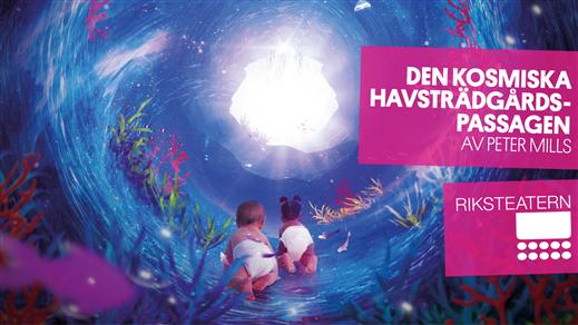 Bild för Den kosmiska trädgårdspassagen, 2020-02-12, Jokkmokk, Aja, Sparbanksalen