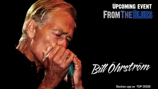 Bild för Bill Öhrström på Fåfängan, 2018-08-23, Fåfängan LIVE 2018 Stockholm