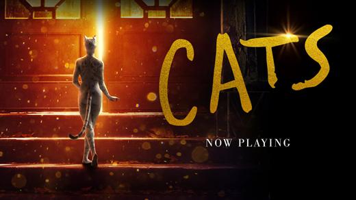 Bild för Cats, 2020-01-19, Biosalongen Folkets Hus