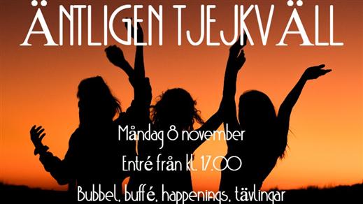 Bild för Tjejkväll med V5® - måndag 8 november, 2021-11-08, Halmstadtravet