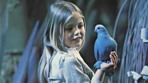 Bild för Fågel blå, 29 januari 14.00, 2017-01-29, Bio Victor, Filmhuset