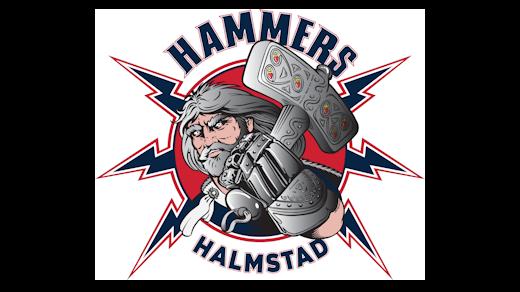 Bild för Halmstad Hammers HC - Vår 11, 2020-02-16, Halmstad Arena