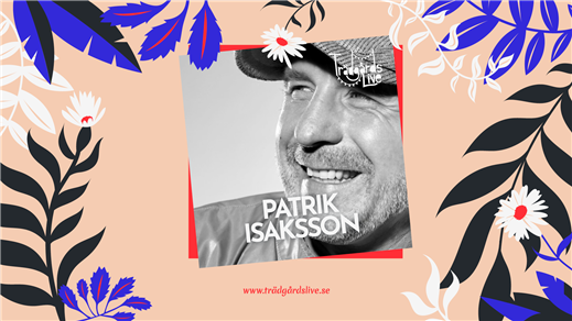 Bild för Trädgårdskonsert med Patrik Isaksson, 2021-07-01, Äteriet