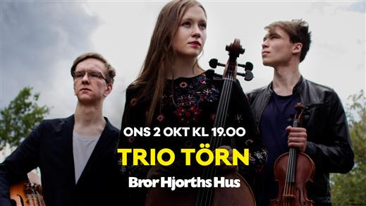 Bild för Trio Törn, 2019-10-02, Bror Hjorths Hus