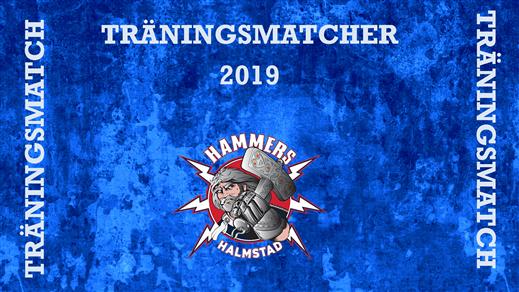 Bild för Hammers - Visby/Roma HK, 2019-09-07, Halmstad Arena