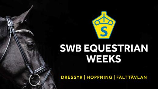 Bild för SWB Equestrian Weeks Dressage, 2019-09-25, Stora Ridhuset i Flyinge