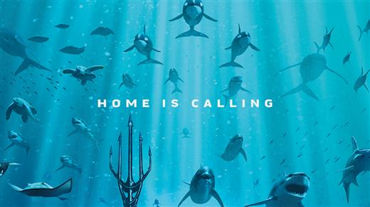 Bild för Aquaman, 2019-03-06, Bräcke Folkets hus