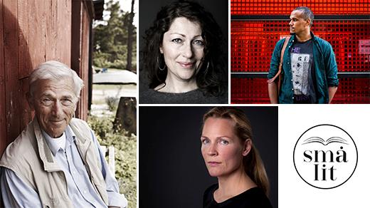 Bild för STORA SCENEN SMÅLIT, 2017-02-04, Jönköpings Teater