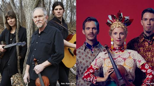 Bild för 200321 Molsky's Mountain Drifters & Lena Jonsson, 2020-03-21, Stallet - Världens Musik