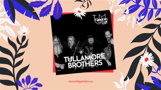 Bild för 58 meter upp Irländsk Afton med Tullamore Brothers, 2020-09-12, Svampen