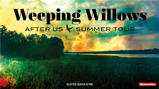 Bild för Weeping Willows, 2019-06-13, Frimis Trädgård