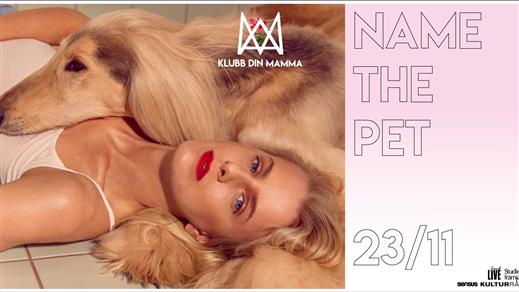 Bild för Name the Pet x Klubb Din Mamma, 2019-11-23, Platens Bar