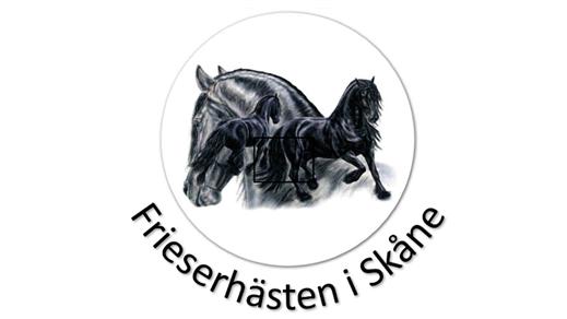 Bild för Högs Gästabud 2, 2018-08-25, Vikingabyn i Hög