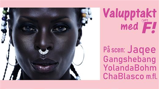 Bild för Valupptakt med F!, 2018-07-28, Pustervik
