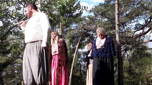 Bild för Dramatiserad guidning i Trollkäringeskogen, 2020-08-01, Trollkäringeskogen, Flasbjörke