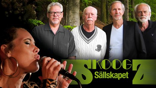Bild för THN JAZZ - SKOOGZSÄLLSKAPET 13/10, 2018-10-13, Kulturbaren, Folkets Hus Kulturhuset