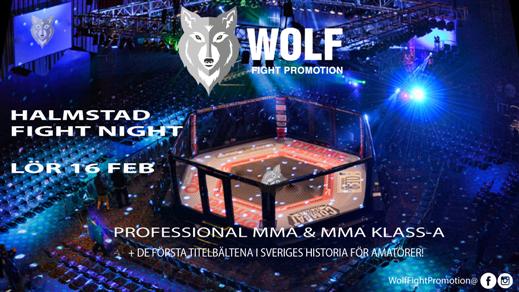 Bild för Halmstad Fight Night - Wolf Fight Promotion, 2019-02-16, Högskolehallen