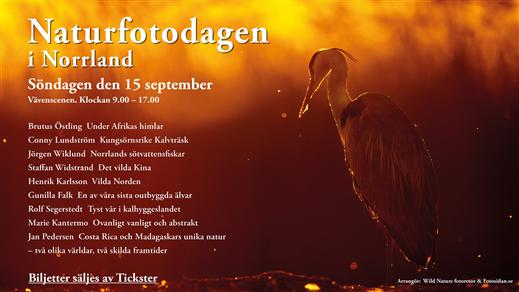 Bild för Naturfotodagen i Norrland, 2019-09-15, Väven
