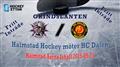 Halmstad HF vs. HC Dalen - GRINDSLANTEN