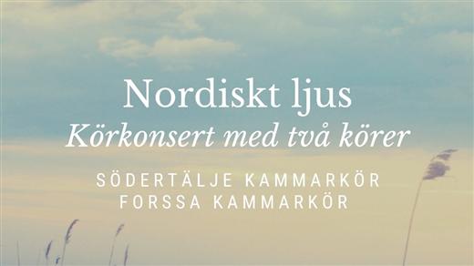 Bild för Nordiskt ljus, 2019-05-25, Hagabergs folkhögskola