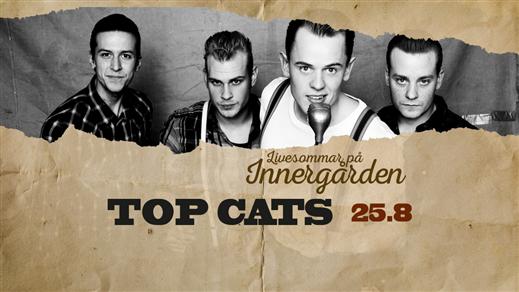 Bild för Top Cats, 2017-08-25, Nöjesfabriken