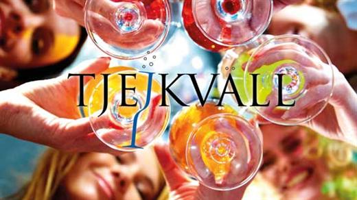 Bild för Tjejkväll, 2018-11-15, Åby travbana