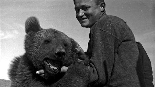 Bild för Historien om björnen som blev soldat, 2019-04-02, Armémuseum