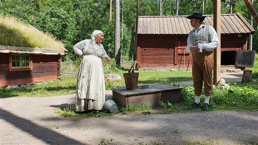 Bild för Den konserverade änkan, 2021-07-24, Gamla Linköping