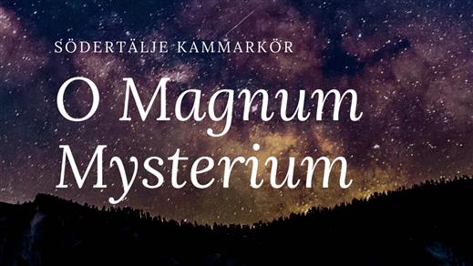 Bild för O Magnum Mysterium, 2019-12-21, Södertälje Missionsförsamling