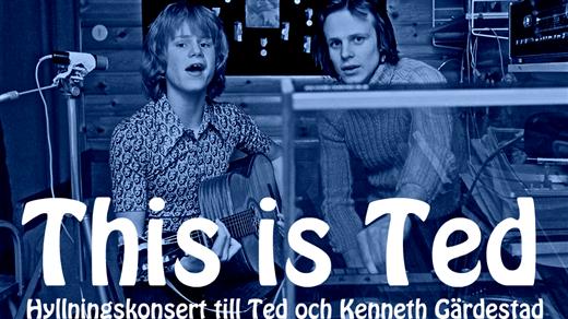 Bild för Tis is Ted Edsbyn, 2018-06-15, Öjeparken Edsbyn