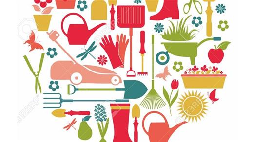 Bild för Biologiska mångfalden och din trädgård, 2020-05-02, Valhall Park Ängelholm