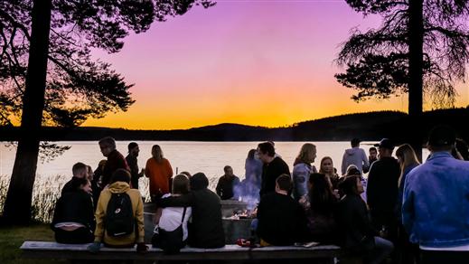 Bild för Bussresa Midnight Light Festival, 2019-07-11, Folkets Hus