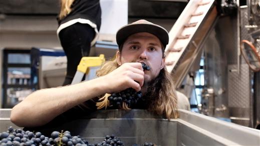 Bild för SKÖRDEFESTEN, 2019-10-04, Wine Mechanics