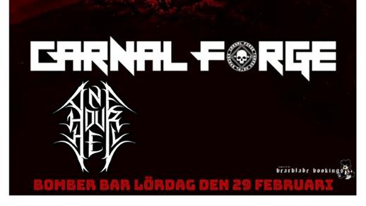 Bild för CARNAL FORGE | ONE HOUR HELL, 2020-02-29, Bomber Bar Motala
