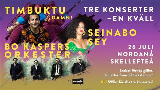 Bild för Bo Kaspers Orkester, Seinabo Sey, Timbuktu & Damn!, 2019-07-26, Nordanåområdet