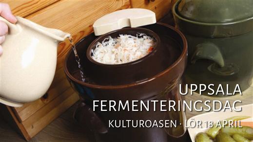 Bild för Uppsala Fermenteringsdag 2020, 2020-04-18, Kulturoasen