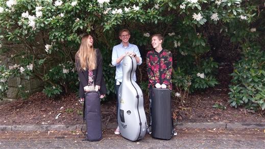 Bild för Stråkafton med Trio Viol, 2020-10-20, Kulturum | Stora scenen