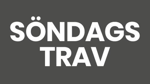 Bild för Söndagstrav (Fri entré), 2019-09-01, Solvalla